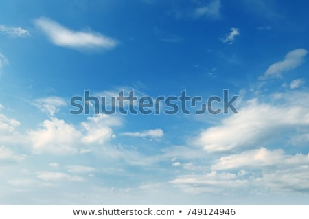 plumose clouds in the blue sky Stock photo © alinamd