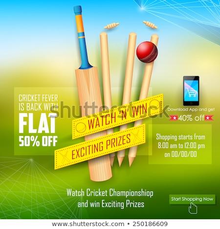 Venta promoción banner cricket temporada ilustración Foto stock © vectomart