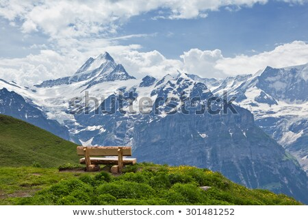 Bench with View of Mountains in the Alps, Switzerland. Stock photo © belahoche