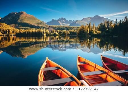 red boat in a mountain lake stock photo © kotenko