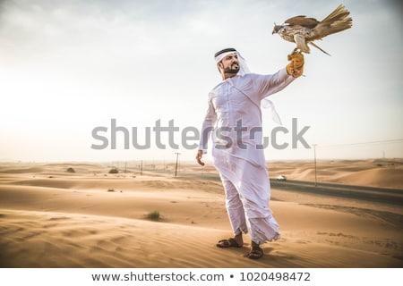 Falconer at sunset Stock photo © adrenalina