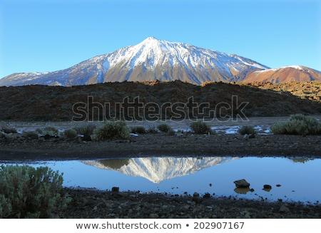 Snow-capped peak of Mount Teide Stock photo © Digifoodstock