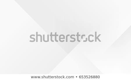 минимальный серый линия эффект фон движения Сток-фото © SArts