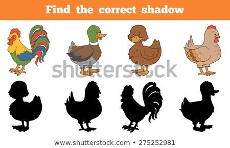 Ninos animales aprendizaje juego encontrar corregir Foto stock © adrian_n