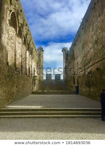inside the castle Rock of Cashel in ireland Stock photo © doomko