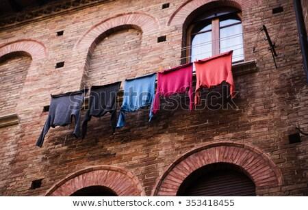 colgante · lavado · línea · hierba · cielo · azul · césped - foto stock © is2