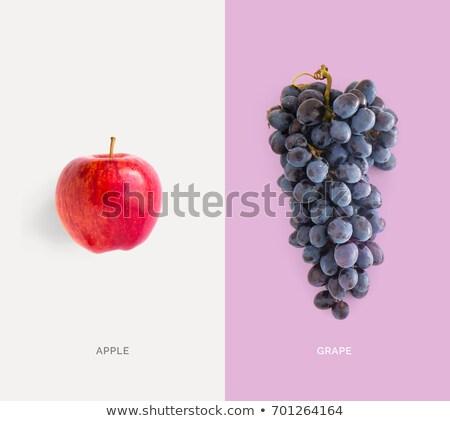 Creative layout bleu rouge raisins laisse Photo stock © Illia