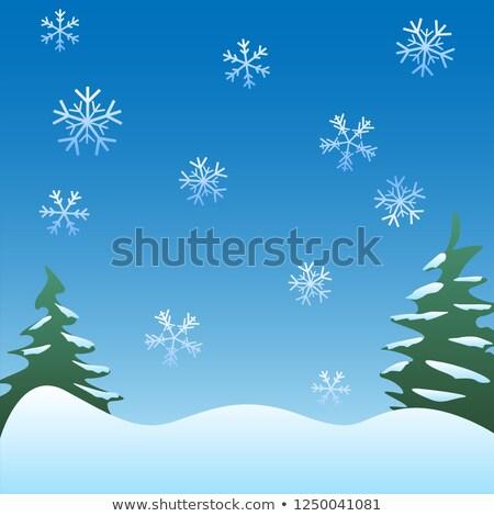 hiver · carte · flocons · de · neige · floral · modèle - photo stock © jeff_hobrath