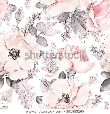 бумаги · цветы · листьев · изолированный · белый · бабочка - Сток-фото © colematt