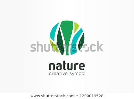 bio leaf eco green nature logo vector icon Stock photo © blaskorizov