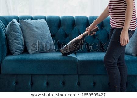Handheld vacuum cleaner  Stock photo © grafvision