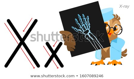 English letter abc alphabet. Owl doctor holds an x-ray Stock photo © orensila