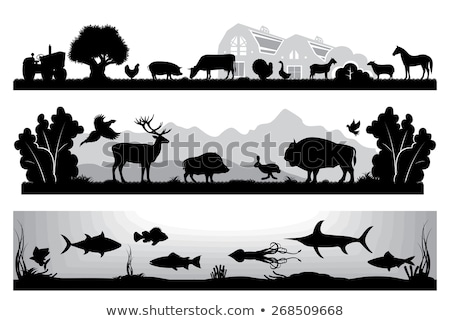 Farm scene with animals and barn on white background Stock photo © bluering
