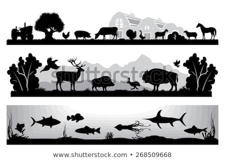 Gospodarstwa scena zwierząt stodoła biały ilustracja Zdjęcia stock © bluering