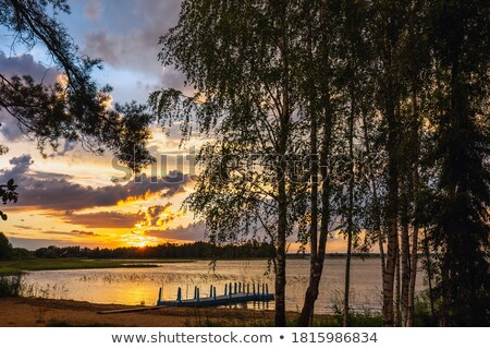 пейзаж район Беларусь Маяк небе лес Сток-фото © borisb17