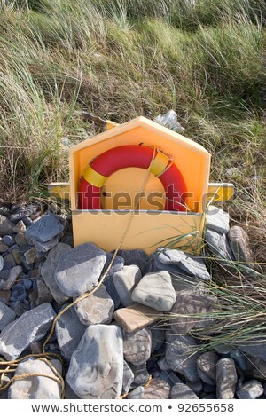 lifebuoy on kerry coast Stock photo © morrbyte
