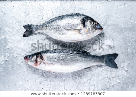 Fresh fish on ice. Stock photo © maisicon