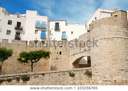 Espanha branco azul casas telhados comunidade Foto stock © aladin66
