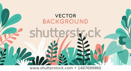 Planta folha padrão fantasia lâmina clip-art Foto stock © zzve