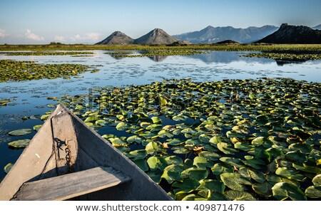 cielo · azul · agua · lago · montana · verano · olas - foto stock © Catuncia