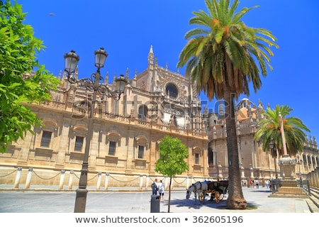 Seville Cathedral Belfry Stock photo © cosma