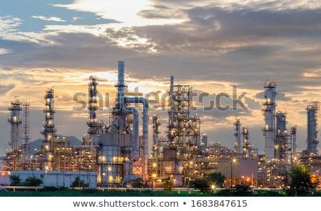 Factory at night Stock photo © cherezoff