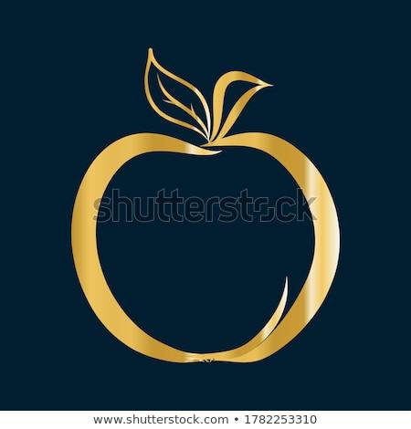 Info Golden Vector Icon Button Stock photo © rizwanali3d