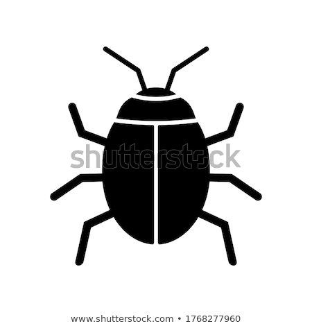 Nero scarabeo rock ritratto pietra parco Foto d'archivio © t3rmiit