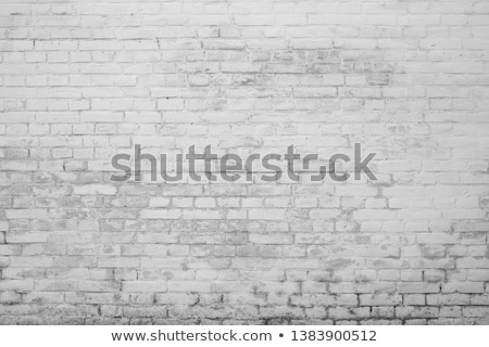 Scratched up white painted brick wall Stock photo © ozgur