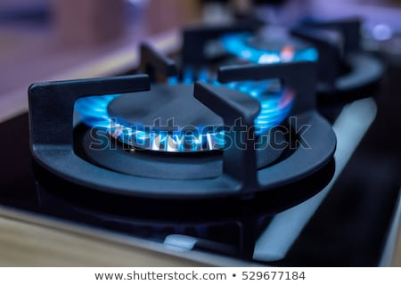 Gas aardgas brandend Blauw vlammen zwarte Stockfoto © nemalo