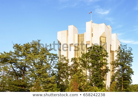 Tall White And Golden Presidency Office Foto stock © FrimuFilms