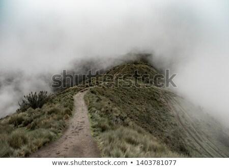 霧の 山 パス 秋 風景 山 ストックフォト © rognar