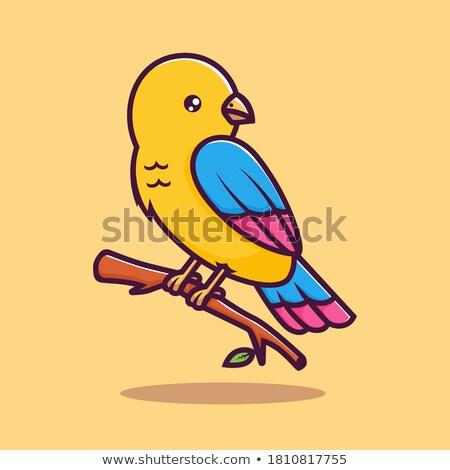 Blauw · vogel · teken · schrijven · brief - stockfoto © cthoman