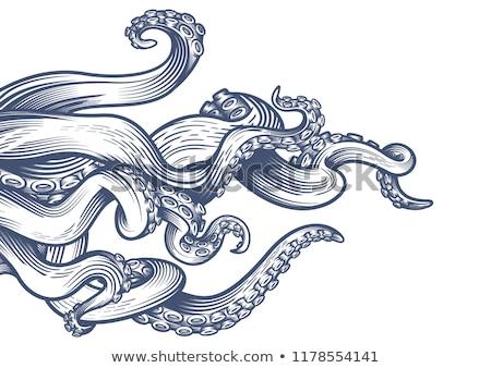 осьминога иллюстрация продовольствие рыбы счастливым Сток-фото © colematt