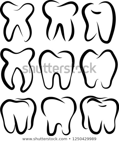 line drawing of tooth set stock photo © blue_daemon