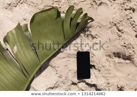 Banaan blad mobiele telefoon strand Stockfoto © wavebreak_media