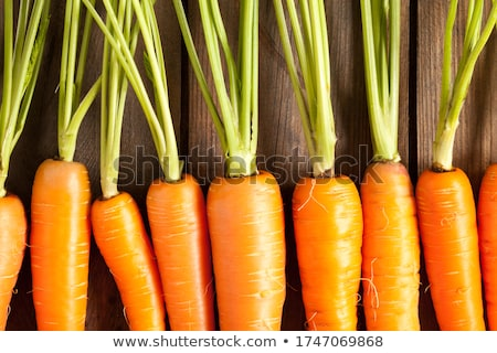 carrots on wood stock photo © agfoto