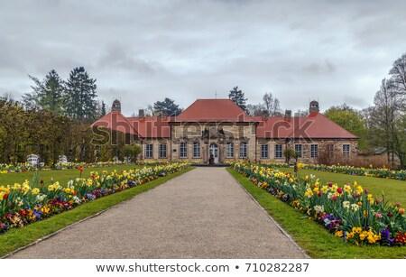старые дворец Германия саду цветок весны Сток-фото © borisb17