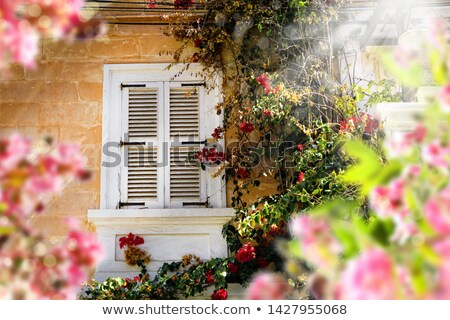 mediterranean house with shutters in malta Stock photo © travelphotography