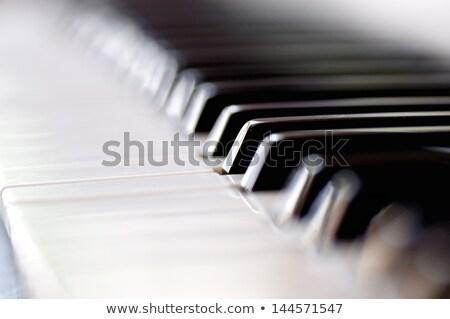 Closeup of piano keyboard DOF  Stock photo © Arsgera