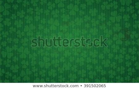 Shamrock Shield Stock photo © cteconsulting
