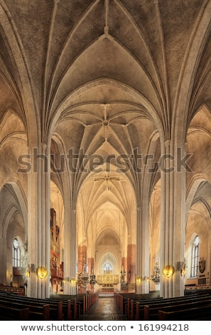 Gothic style church ceiling Stock photo © dinozzaver