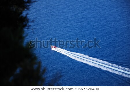 Boat driving fast behind trees on the shore Stock photo © Mps197