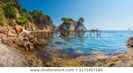 Natuur mooie middellandse zee kust Kroatië Stockfoto © Lizard