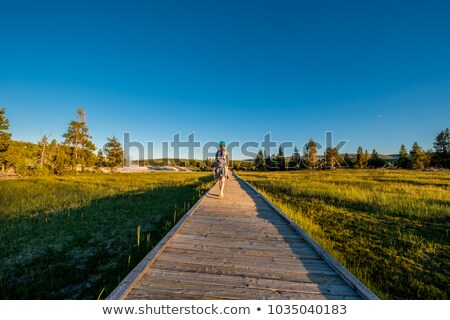 parque · géiser · natureza · terra · montanhas · salpico - foto stock © tab62
