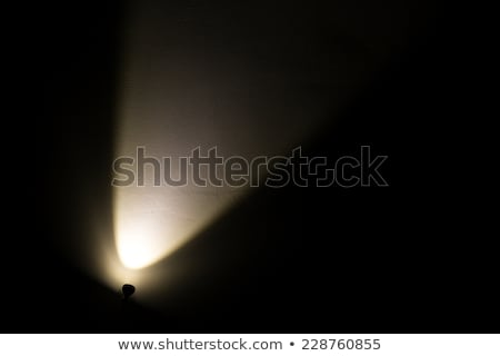 Dark Wall Illuminated from the Left Corner Spotlight Lamp Stock photo © Discovod