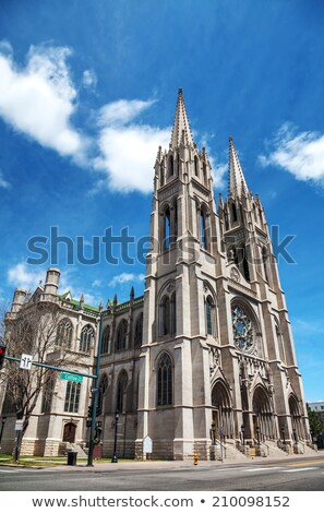the cathedral basilica of the immaculate conception in denver c stock photo © andreykr