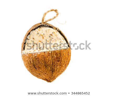 Cocunut fat feeder for birds Stock photo © manfredxy
