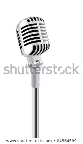 Audio speaker. XXL Stock photo © kayros