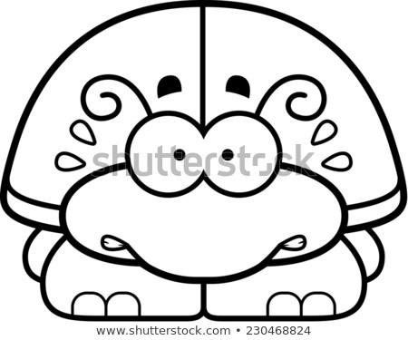 Nervioso pequeño escarabajo Cartoon ilustración mirando Foto stock © cthoman